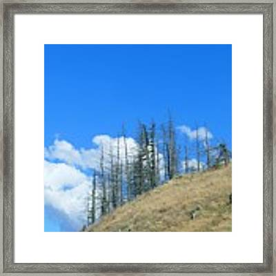 At The End Of The World Framed Print by Ivana Westin
