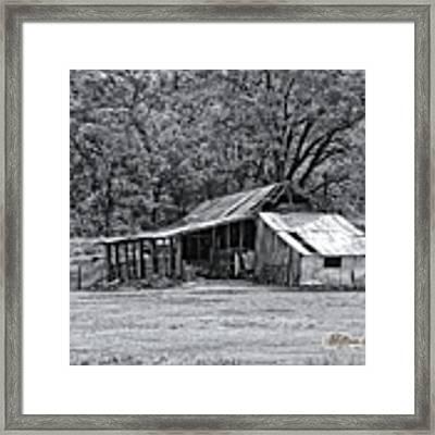 Auburn Barn Framed Print by William Havle