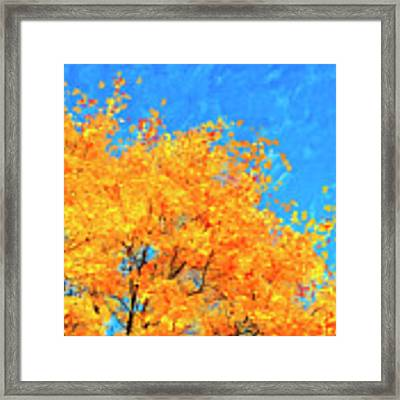 The Power Of Color Framed Print by Mark Tisdale