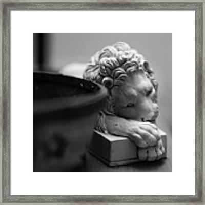 Bored Framed Print by Break The Silhouette