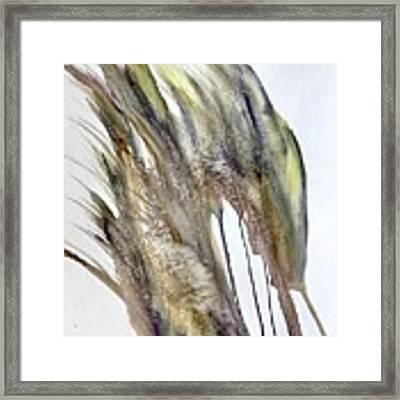 Breeze Framed Print by Katerina Kovatcheva