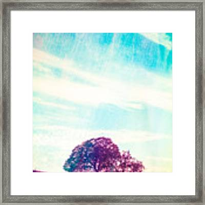 California Memories  Framed Print by Priya Ghose