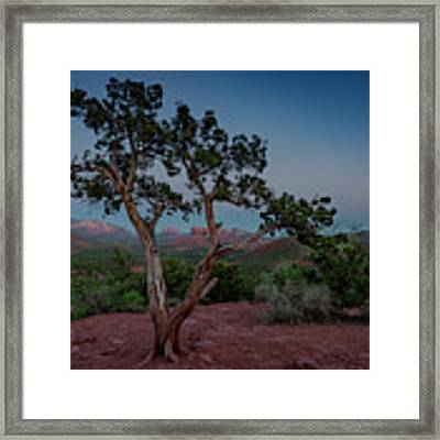 Cathedral Rock Overview Framed Print by Gary Lengyel