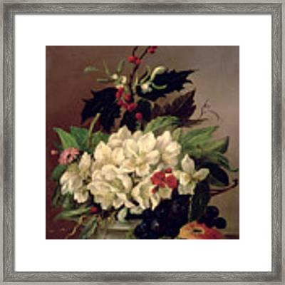 Christmas Roses Framed Print