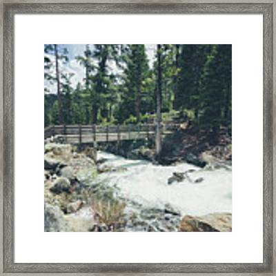 Cleanse The Palette Framed Print by Margaret Pitcher