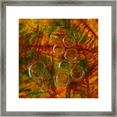 Colors Of Nature 10 Framed Print by Sami Tiainen