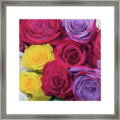 Decorative Wallart Brilliant Roses Photo B41217 Framed Print by Mas Art Studio