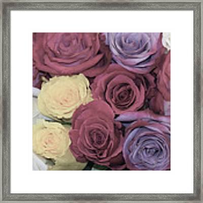 Decorative Wallart Brilliant Roses Photo C41217 Framed Print by Mas Art Studio