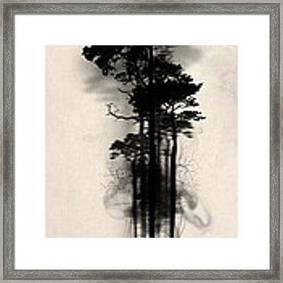 Enchanted Forest Framed Print by Nicklas Gustafsson