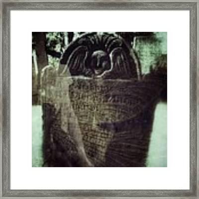 Fairies Framed Print by Delight Worthyn