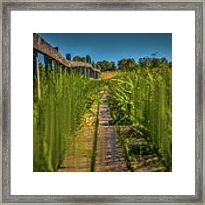Fairy's View #h5 Framed Print by Leif Sohlman