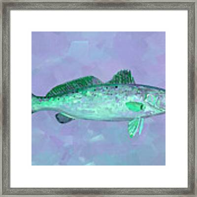 Fanciful Lavender Mint Sea Trout Framed Print by Shelli Fitzpatrick