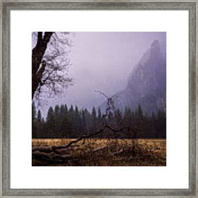 First Snow In Yosemite Valley Framed Print by Priya Ghose
