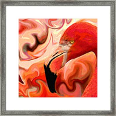 Flamingoed An Abstract In Pink Framed Print by Shelli Fitzpatrick