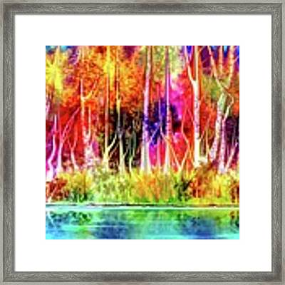 Forest Stream Framed Print by Darren Cannell