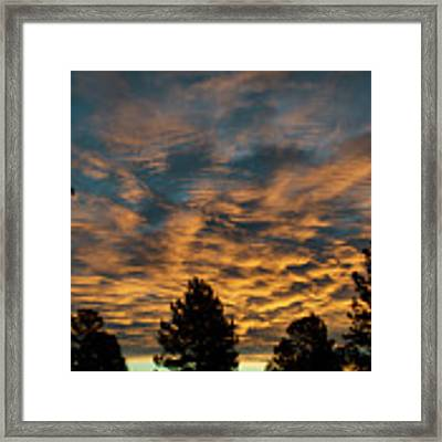 Golden Winter Morning Framed Print by Jason Coward