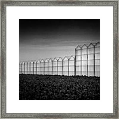 Greenhouse Framed Print by Dave Bowman