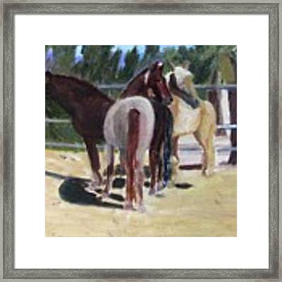 Gregory And His Mares Framed Print by Linda Feinberg