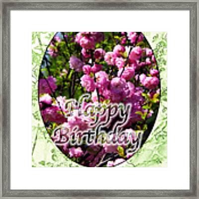 Happy Birthday - Greeting Card - Almond Blossoms No. 1 Framed Print by Sascha Meyer