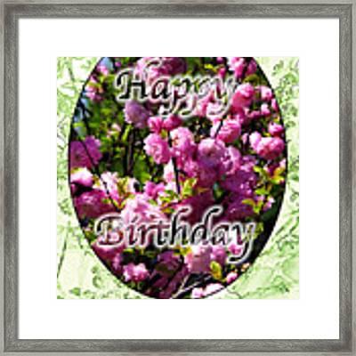 Happy Birthday - Greeting Card - Almond Blossoms No. 2 Framed Print by Sascha Meyer