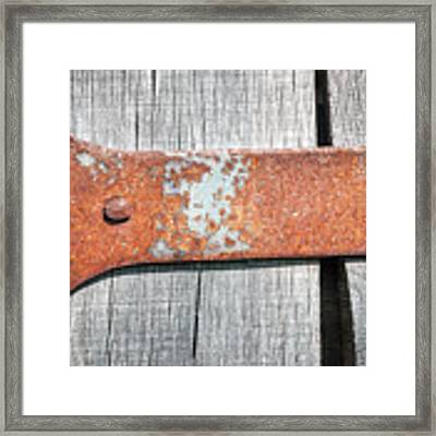 Hinge Framed Print by Todd Blanchard