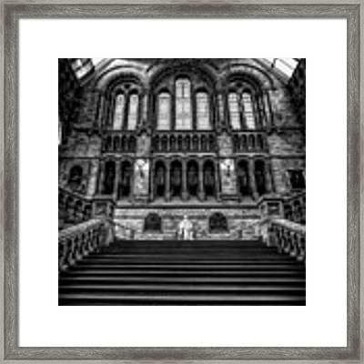History Museum London Framed Print by Adrian Evans