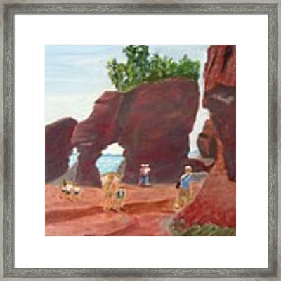 Hopewell Rocks2 Framed Print by Linda Feinberg