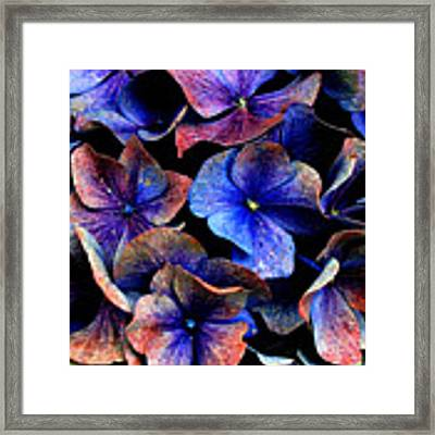 Hues Framed Print by Julian Perry