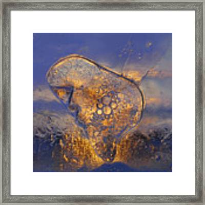 Ice Land Framed Print by Sami Tiainen