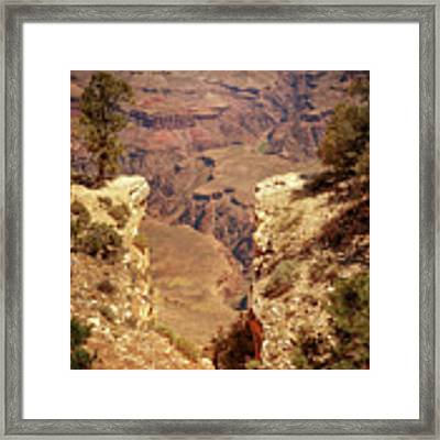 Into The Canyon Framed Print by Susan Rissi Tregoning