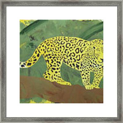 Jaguar Framed Print by Candace Shrope