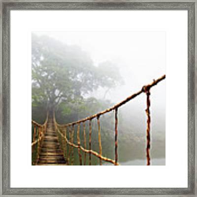 Jungle Journey Framed Print