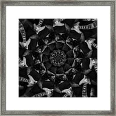 Kaliedagarcia Framed Print by Ben Upham