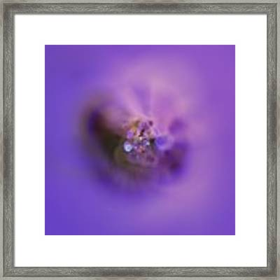 Light And Sound Abstract Framed Print by Robert Thalmeier