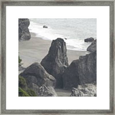 Lush Rock Coast Framed Print by Dylan Punke