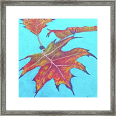 Drifting Into Fall Framed Print by Phyllis Howard
