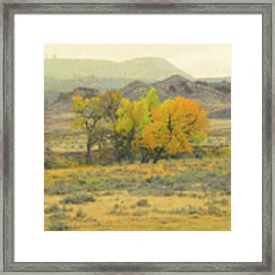 Montana Autumn Reverie Framed Print by Cris Fulton
