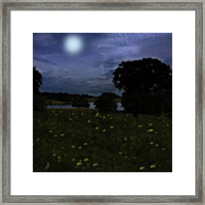 Moonlight Flowers In Cheshire Framed Print by David Dehner
