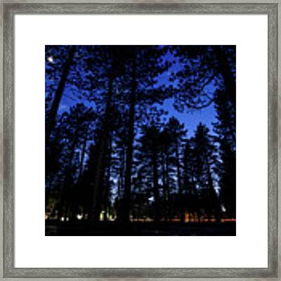 Moonrise In The Woods Framed Print by Margaret Pitcher