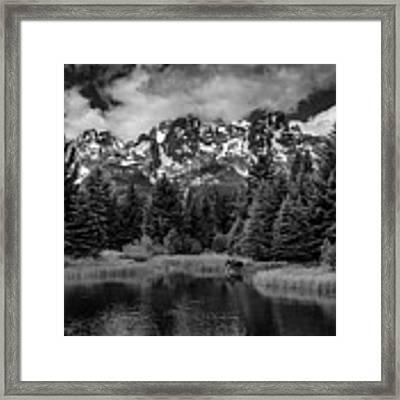 Moose At Schwabacher's Landing Framed Print by Gary Lengyel