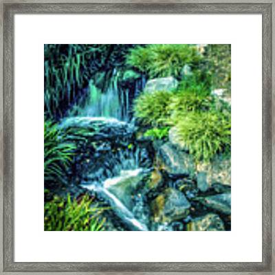 Mountain Stream Framed Print by Samuel M Purvis III