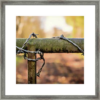 No Entry Framed Print by Nick Bywater