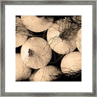 Onions Framed Print by Jennifer Wright