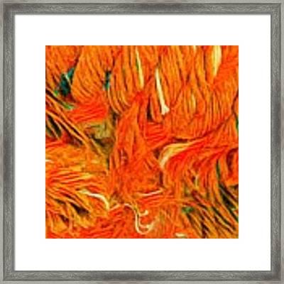 Orange Art Framed Print by Colette V Hera Guggenheim