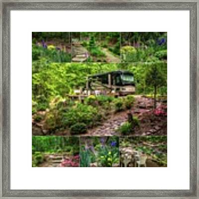Our Woods In Nc Framed Print by Claudia Abbott