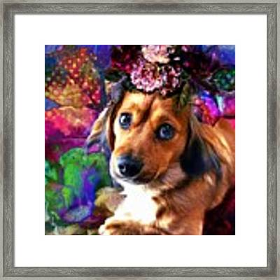 Party Animal Framed Print by Delight Worthyn