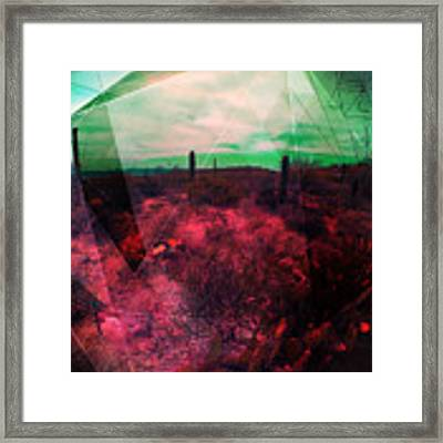 Passion In The Desert Framed Print by MB Dallocchio