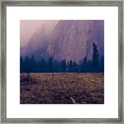 Pathway During First Snow In Yosemite Valley Framed Print by Priya Ghose