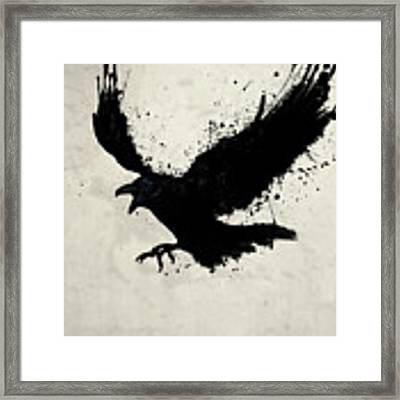 Raven Framed Print by Nicklas Gustafsson