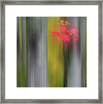 Red Leaves - Abstract Framed Print by Gary Lengyel